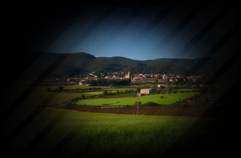 Celler Grapissó, vins d'altura, del territori amb tradició familiar, de la Llacuna i dins la denominació d´origen Penedès.